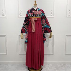 大菊・ターコイズ(限定柄)×袴 ピンク縞リボン